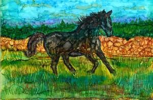 Horselr