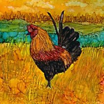 Caribbean Rooster